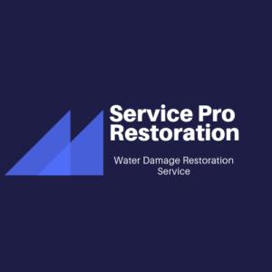 Rochester Service pro restoration
